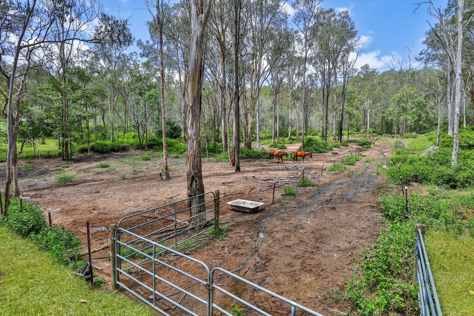 31-39 Eucalypt Road, Logan Village QLD 4207, Image 0