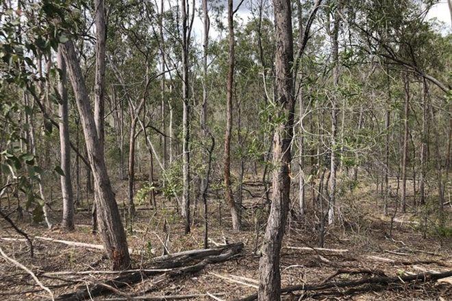 Picture of Lot 104 Short Cut Road, DELAN QLD 4671