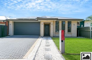 Picture of 1B Buccleuch Ave, Findon SA 5023