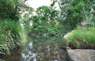 753 Wilsons Creek Road, Wilsons Creek NSW 2482