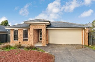 Picture of 204 Jobs Gully Road, Jackass Flat VIC 3556
