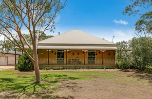 Picture of 1242 Toowoomba Cecil Plains Rd, Wellcamp QLD 4350