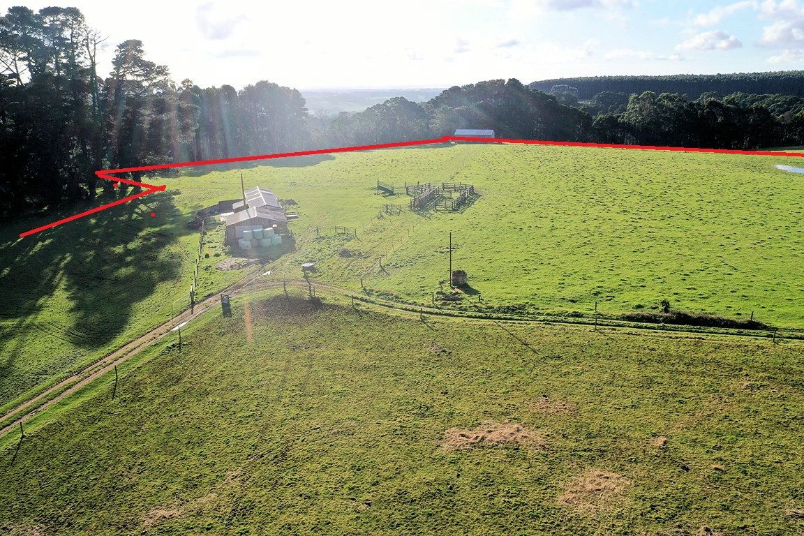 305 Youngs Road, Lileah TAS 7330, Image 2