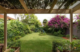 Picture of 37 Crieff Street, Ashbury NSW 2193