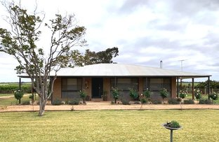 Picture of 137 SEYMOUR ROAD, Coomealla NSW 2717