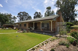 Picture of 89 Jingellic Road, Holbrook NSW 2644