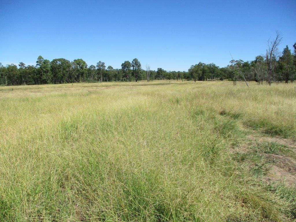 2519 ACRES GRAZING PROPERTY, Dulacca QLD 4425, Image 2