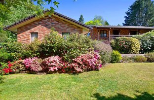 Picture of 6 Lawrence Street, Blackheath NSW 2785