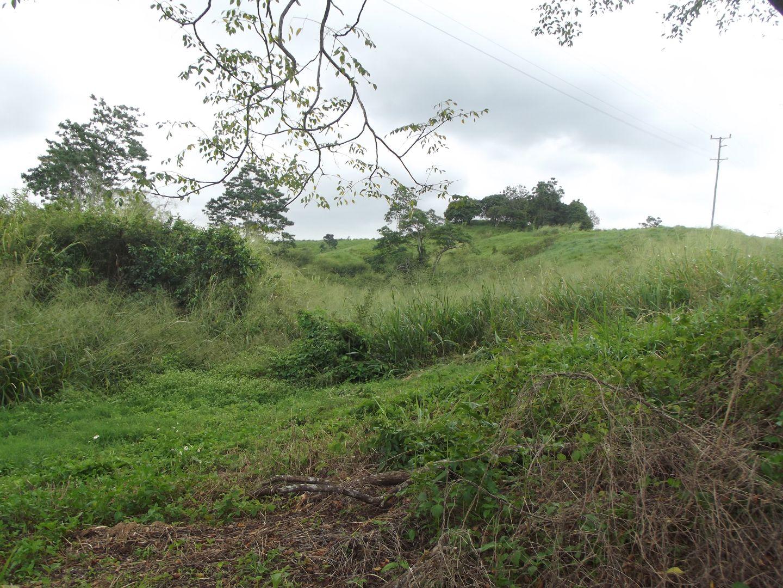 Mount Charlton QLD 4741, Image 2