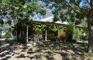 Picture of 37 Bayly Street (LUE), Mudgee NSW 2850