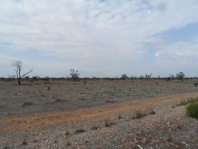 Section 106 Sturt Highway, Blanchetown SA 5357, Image 1