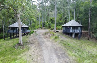Picture of Lot 7/1953 Chichester Dam Road, BANDON GROVE Via, Dungog NSW 2420