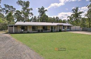 Picture of 29-31 Waratah Place, Cedar Vale QLD 4285