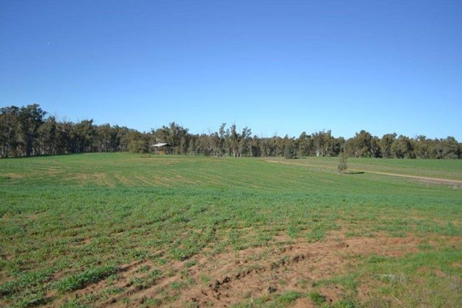 "Picture of ""Narrandera Park"", EUROLEY NSW 2700"