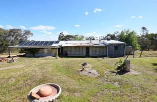 Picture of 246 Griffiths Track, Mount Bruno VIC 3675