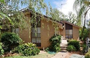 Picture of 17 Wallowa St, Leeton NSW 2705