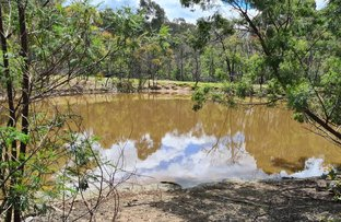 Picture of 165 GHIN GHIN ROAD, Whiteheads Creek VIC 3660