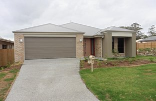 Picture of 15 Firestone Avenue, Pimpama QLD 4209