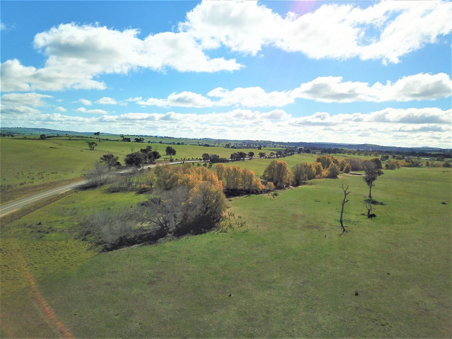 1174 Lachlan Valley Way, Yass NSW 2582, Image 2