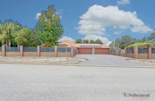 Picture of 2 Martingale Avenue, Henley Brook WA 6055