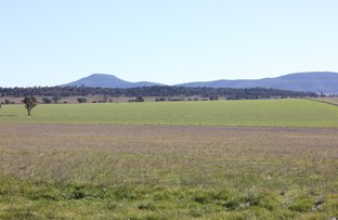 8710 Kamillaroi Highway, Gunnedah NSW 2380