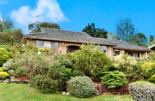 16 Byron Avenue, Lower Plenty VIC 3093