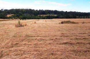 Picture of 35 Allgomera Road, Eungai Creek NSW 2441