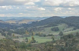 Picture of 1362 Bald Ridge Road, Burraga NSW 2795