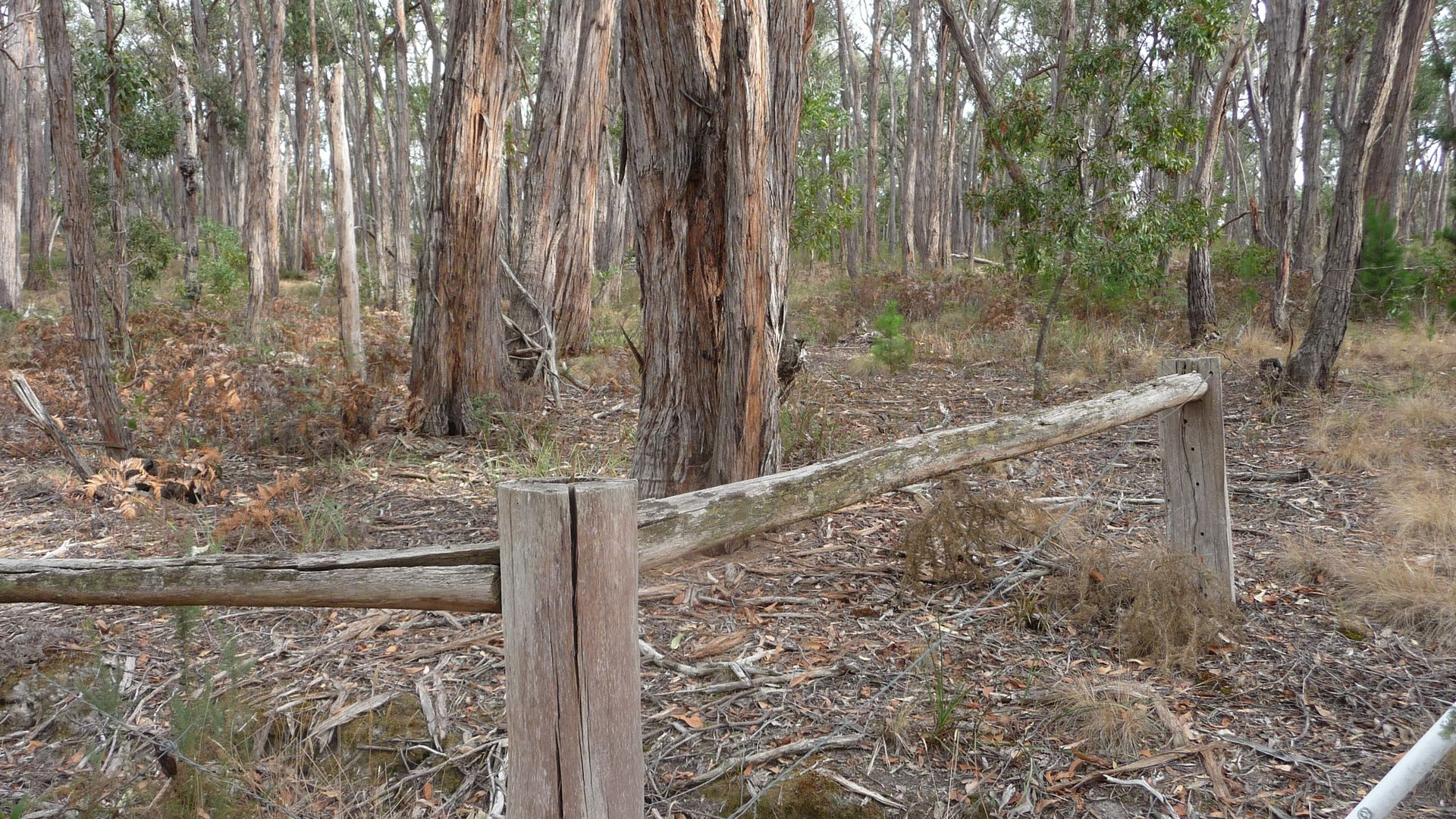 CA 7A Tilligs Road, Scarsdale VIC 3351, Image 2