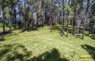 Picture of 29 Barina Drive, Colo Heights NSW 2756
