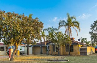 Picture of 10 Fantail Way, Huntingdale WA 6110
