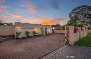 Picture of 8 Krugger Place, Leeming WA 6149