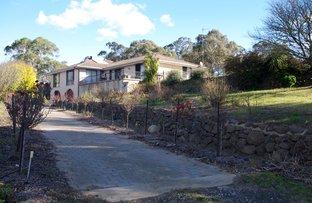 2-22 Mort Street, Bombala NSW 2632