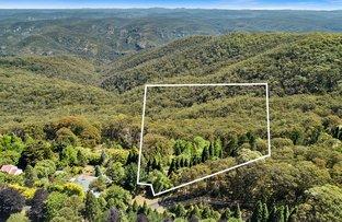 Picture of 105 Mount Irvine Road, Mount Wilson NSW 2786