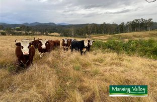Picture of 85 & 40, 2240 Bulga Road, Bobin NSW 2429