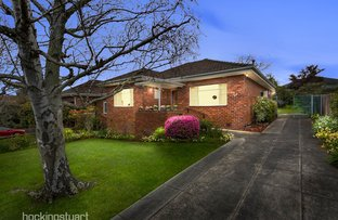 10 Patricia Street, Box Hill VIC 3128
