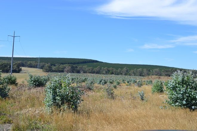 Picture of Pieras Road, HIAMDALE VIC 3847