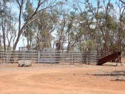 """ Challoner Park"", Dirranbandi QLD 4486, Image 0"