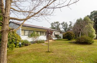 Picture of 2195 Maroondah Highway, Buxton VIC 3711