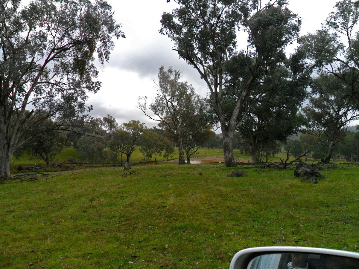 2,38,39/1701 Adelong Road, Tumblong NSW 2729, Image 2