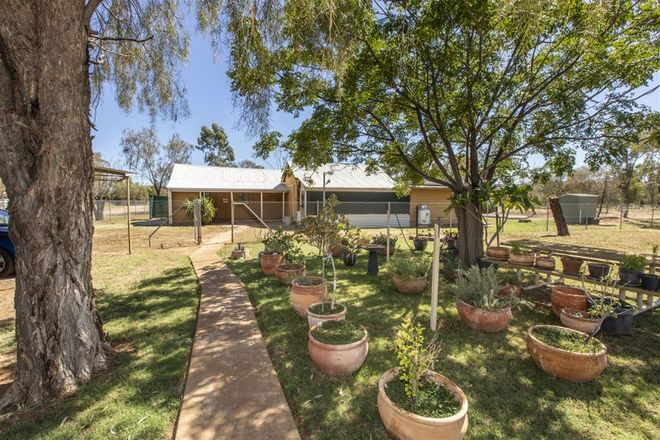 Picture of 26 Parakeelya Road, CONNELLAN NT 0873