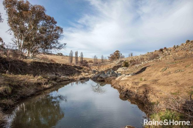 Picture of 645 Matong Road, NUMBLA VALE NSW 2628
