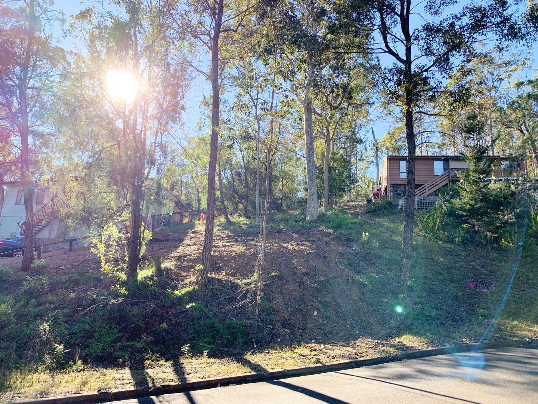 15 Ibis Place, Catalina NSW 2536, Image 1
