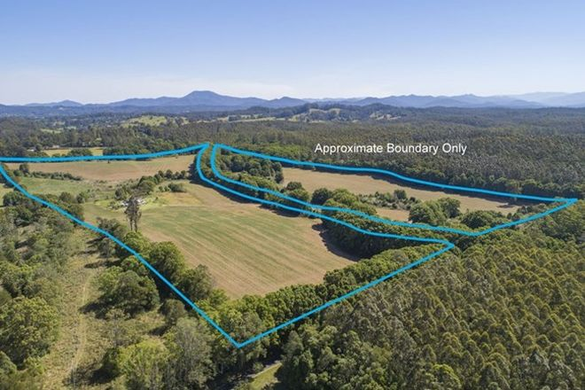 Picture of 555 Hydes Creek Road, BELLINGEN NSW 2454