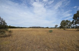 Picture of CA 65 Frenchmans-Starnaud Road, Barkly VIC 3384