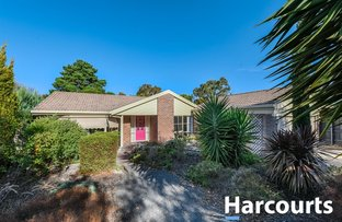 Picture of 12 Eagle Court, Blind Bight VIC 3980