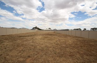 Picture of 64 Patrick Street, Strathmerton VIC 3641