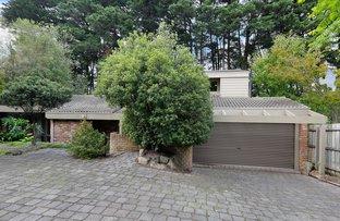 Picture of 2/87 Essex Road, Surrey Hills VIC 3127