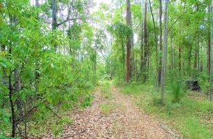 Picture of 187 Burtons Road, Bridges QLD 4561