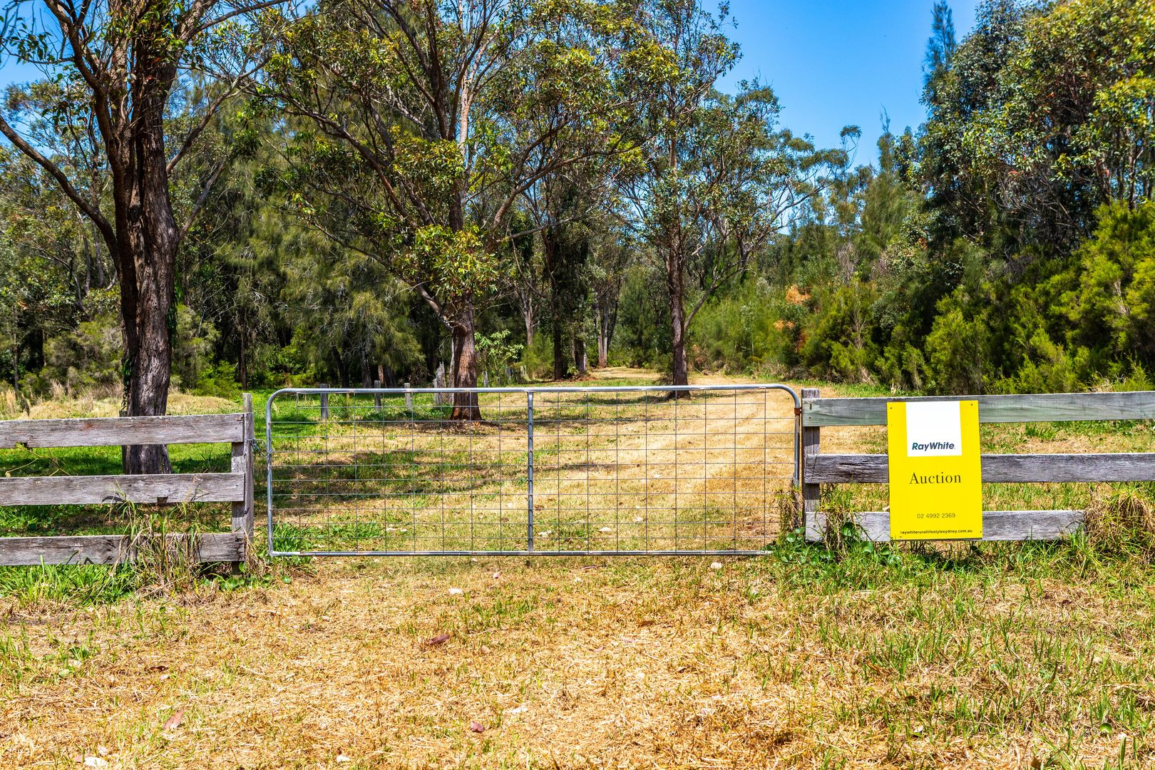 56a Lisadell Road, Medowie NSW 2318, Image 1